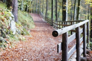 Get ready for Stony Rail Trail Event at Sweet Arrow Lake County clubhouse on Oct. 18: